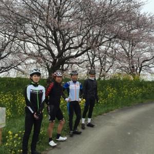 4月17日(日)朝サイクリングは中止します